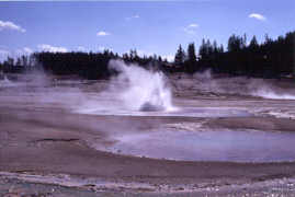 Constant Geyser (Whirligig Geyser in the foreground)