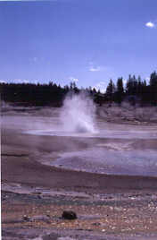 Constant Geyser in eruption